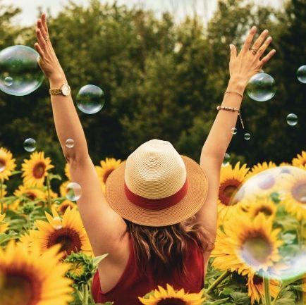Sunflower Bubbles